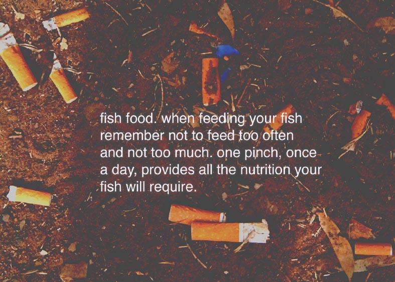 fishfood-copy